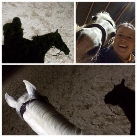 paard, rijden, rijbak, selfie