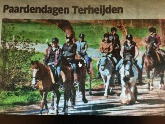 Krant, foto, terheijden, paardendagen