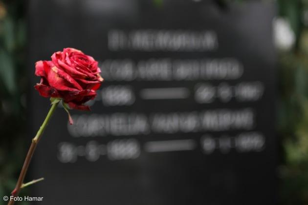 Roos bij graf op begraafplaats als laatste herinnering