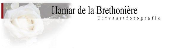 Logo uitvaartfotografie Hamar.