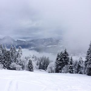 Besneeuwde berg met witte bomen. Uitzicht bij laatste afdaling