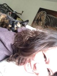 kat ligt op rug van baasje