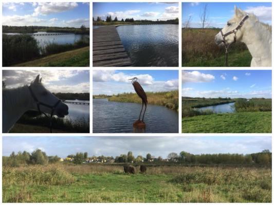 wandelpaden met uitzicht op de polder